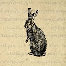 vintage rabbit digital image rabbit graphic bunny printable easter