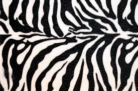 zebra print wallpaper