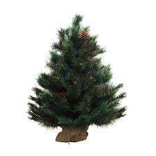 shop northlight 3 ft oregon pine artificial tree at