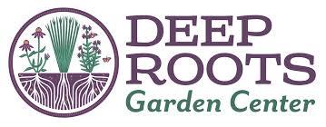 native plants definition native plants for lasting beauty u2014 deep roots garden center