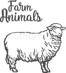 white sheep isolated vector sketch drawn by hand on a light