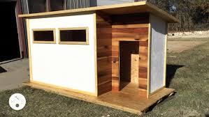 cool dog houses really cool dog houses fresh build a modern dog house modern builds