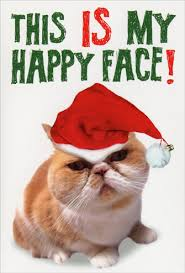 my happy face box of 12 funny humorous cat themed christmas