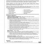 Resume Summary Statement Examples Examples Of Resumes 87 Excellent Professional Education U201a Skills