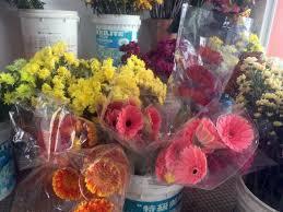 Flower Wholesale Mary Florist Melaka Florist Wholesale Flower 24 Hour Florist