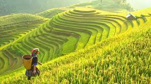 travel asia images Best places to travel in asia in 2018 bookmundi jpg