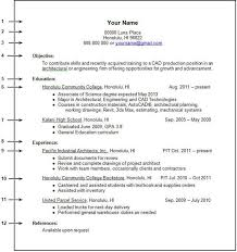 how to build a resume with no experience aviation resume examples