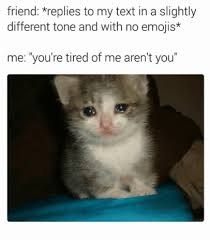 Anxiety Cat Meme - moving forward despite anxiety depression sylvia marcia