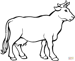 cattle coloring pages free coloring pages