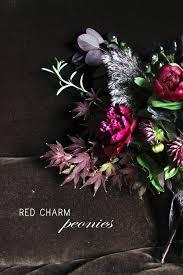 Peony Arrangement Red Charm Peony Arrangements Ruffled