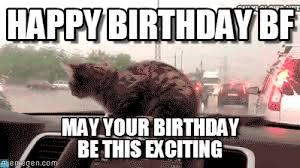 Boyfriend Birthday Meme - happy birthday bf windshield cat meme on memegen