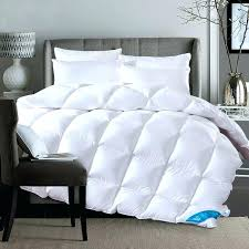 Echo Bedding Sets Echo Bedding Comforter Sets Vandanalighthealing Me