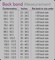 Vanity Fair Panties Size Chart Bra Measuring Guide Bra Size Chart Fitting Guide