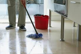 Bona Terry Cloth Mop Covers by Walmart Wood Floor Cleaner Image Collections Home Flooring Design