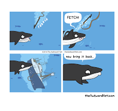 Whaling Meme - the awkward yeti characters minke whale
