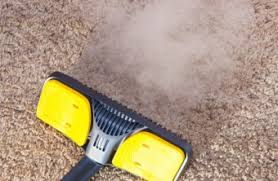 Area Rug Cleaning Equipment Carpet And Rug Cleaning Articles And Tips Enlighten Me