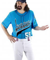 Halloween Baseball Costumes Baseball Costumes Halloween Costume Ideas 2016