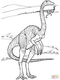 gallimimus dinosaur coloring page free printable coloring pages