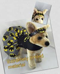 pet costume halloween batman inspired dog costume character batman dog