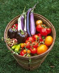 Vegetables Garden Ideas Planning Your Vegetable Garden Martha Stewart