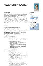 Resume Example Singapore by Senior Consultant Resume Samples Visualcv Resume Samples Database