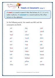 grade 3 grammar topic 37 vowels and consonants worksheets lets