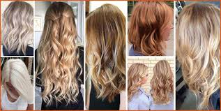 blonde hair color chart general resumes