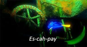 Finding Nemo Seagulls Meme - finding nemo gifs on gifer