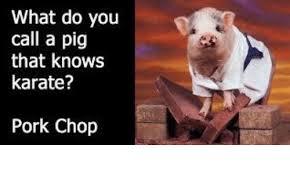 Pork Chop Meme - what do you call a pig that knows karate pork chop meme on me me