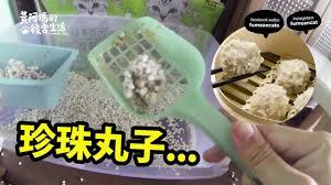 駑ission cuisine 黃阿瑪的後宮生活 貓奴的功能
