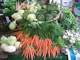 to start indoor vegetable gardening