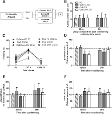 involvement of crfr1 in the basolateral amygdala in the immediate