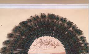 peacock feather fan 160cm 170cm large decorative peacock feather fan for party