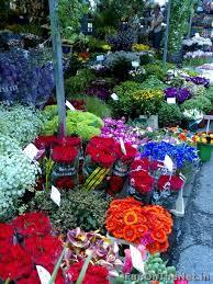 flower shops in 56 best flower market images on flower market flower