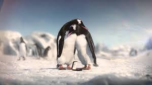kay jewelery kay jewelers penguins youtube