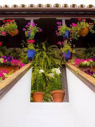 Flower Pot Arrangements For The Patio Patios De Cordoba Spain Top Tips Before You Go With Photos