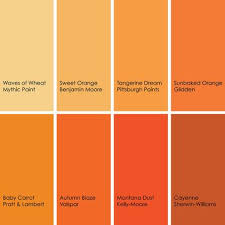 orange and color from houzz if you want to use orange in your kitchen but aren t