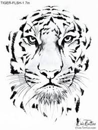 tiger head drawings in pencil pencil drawings pinterest