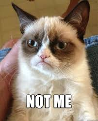 Not Me Meme - not me grumpy cat quickmeme