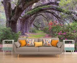 baum wald wallpaper baum wandbild natur wandbild natur