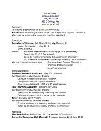 Summary In A Resume Example What Is Included In A Resume Profile Virtren Com