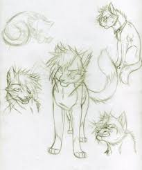 cat reference sketches favourites by sylvacktica on deviantart