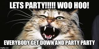 Woo Meme - party time baby imgflip
