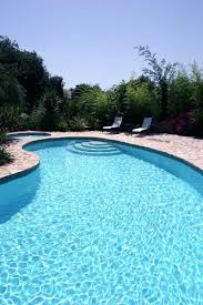 swimming pool sizes kidney pool lengthwise view of a kidney shaped swimming pool small