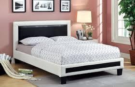 furniture of america modern arlette black u0026 white platform bed