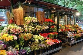 flower shop creative ways to open a flower shop floranext florist websites