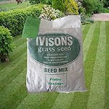10 kg pristine ornamental grass seed lawn seed no rye grass