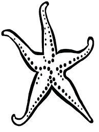 printable starfish poem preschool story stars print crayons