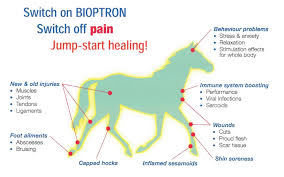 bioptron therapy uk with steven warren bioptron light therapy systems