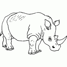 wild animals drawing easy pencil sketch animals love drawing of